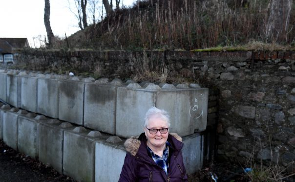 Councillor Yvonne Allan at the Motte monument, Baxter Place, Aberdeen.  Picture by Jim Irvine