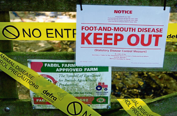 Warning notices at a farm know locally as The Klondyke, near Egham, Surrey, after sheep suspected to have foot and mouth were culled last night.  Photo: Gareth Fuller/PA Wire