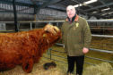Gordon McConachie  president of the Highland Cattle Society