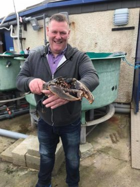 Fisherman James Wilson with the lobster.