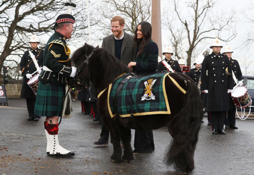 The royal couple meet Pony Major Mark Wilkinson and regimental mascot Cruachan IV