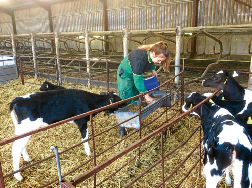 Ringlink and Scotland's Rural College have received funding to develop the apprenticeship scheme