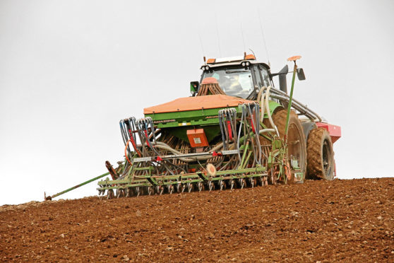 The winter-sown cereals acreage is down 11%.