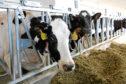 The milk price goes up in September