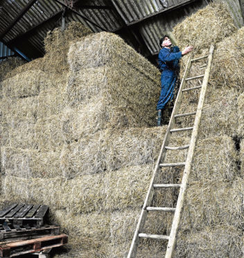 HSE chairman Martin Temple has called for safer working practices on farms and crofts
