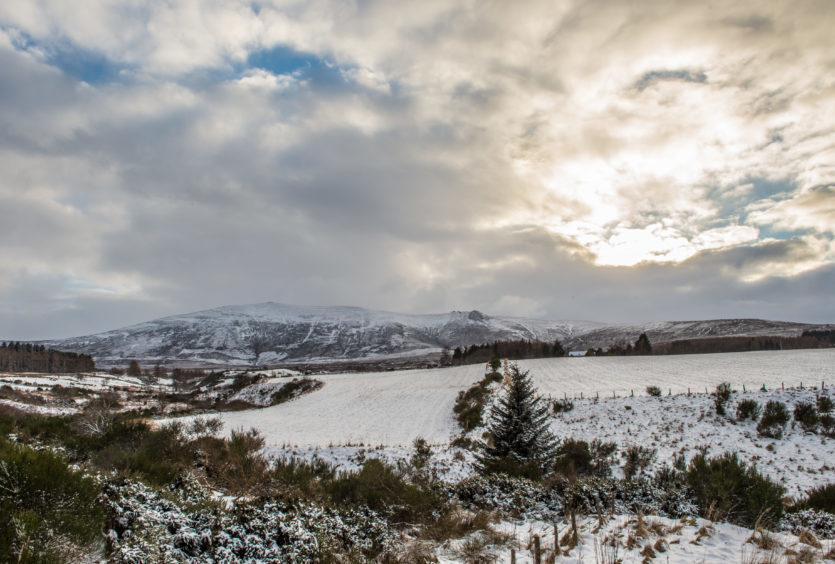 Picture by JASON HEDGES     Pictures show some general snow pics near Aberlour, Moray. Picture show Ben Rinnes in the background.