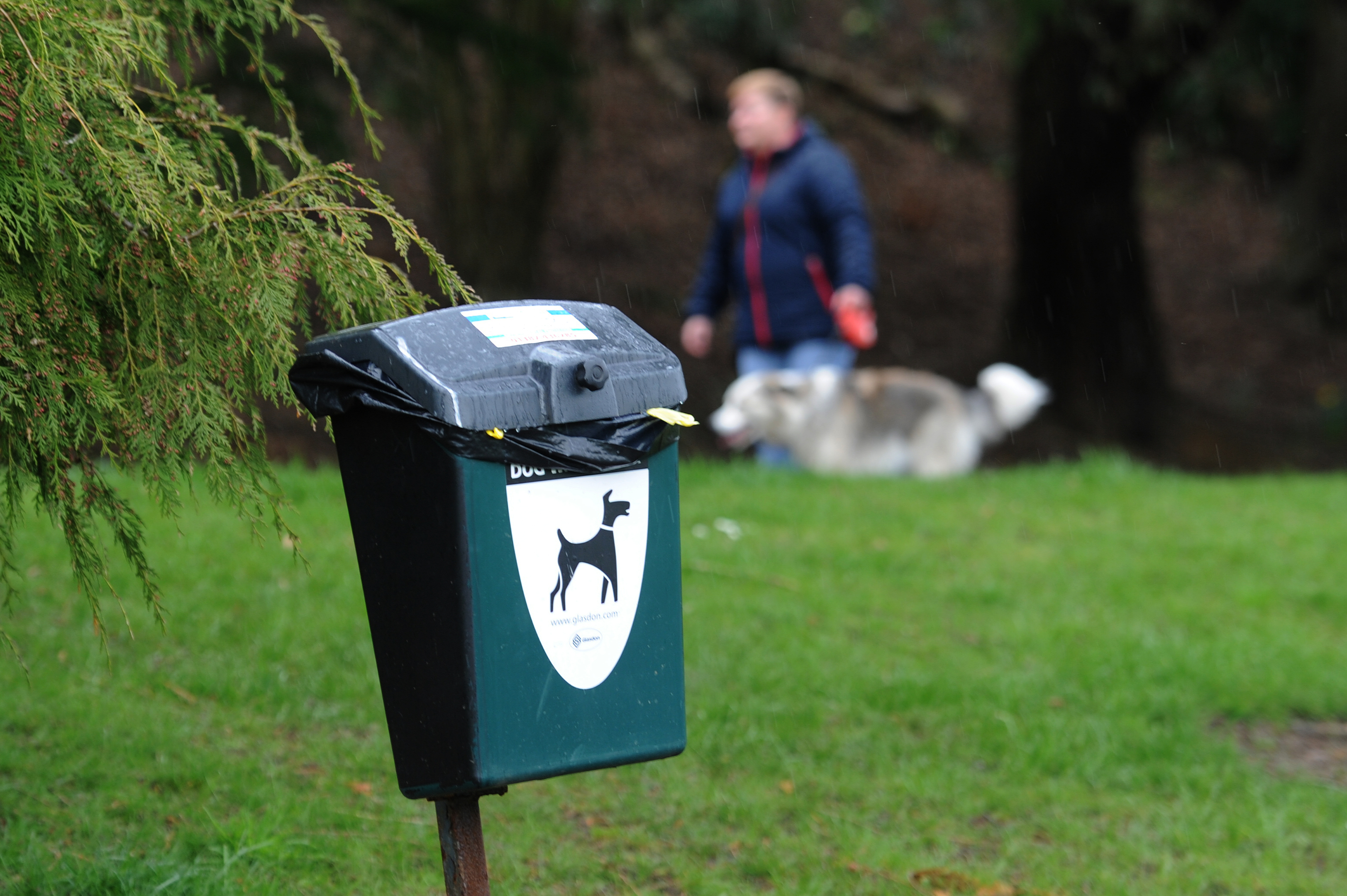 No dog fouling fines have been issued in Aberdeenshire since 2016.