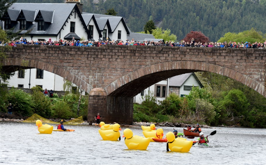 The Ballater Duck Festival and duck race