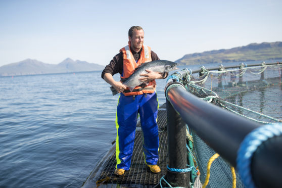Fish farm manager Robert Wyvill, 34, originally from North Uist who has worked in fish farms since 1996 and on Muck since July 2014 at Marine Harvest's salmon farm on the Isle of Muck, Scotland.
