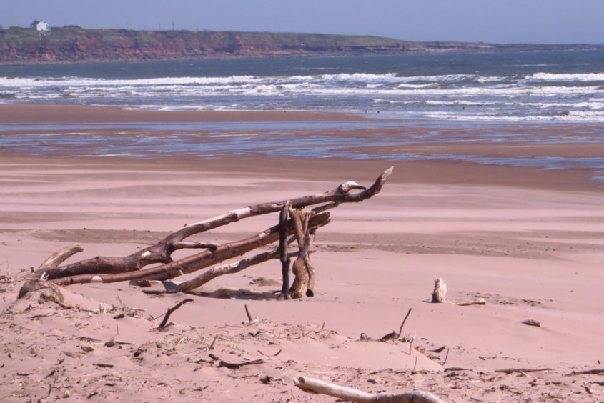 St Cyrus is famous for its sandy dunes