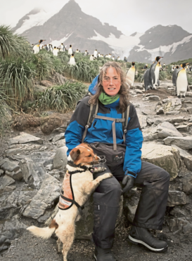 Dog handler Jane Tansell with her rat detection dog Wai and some of South Georgia's natives