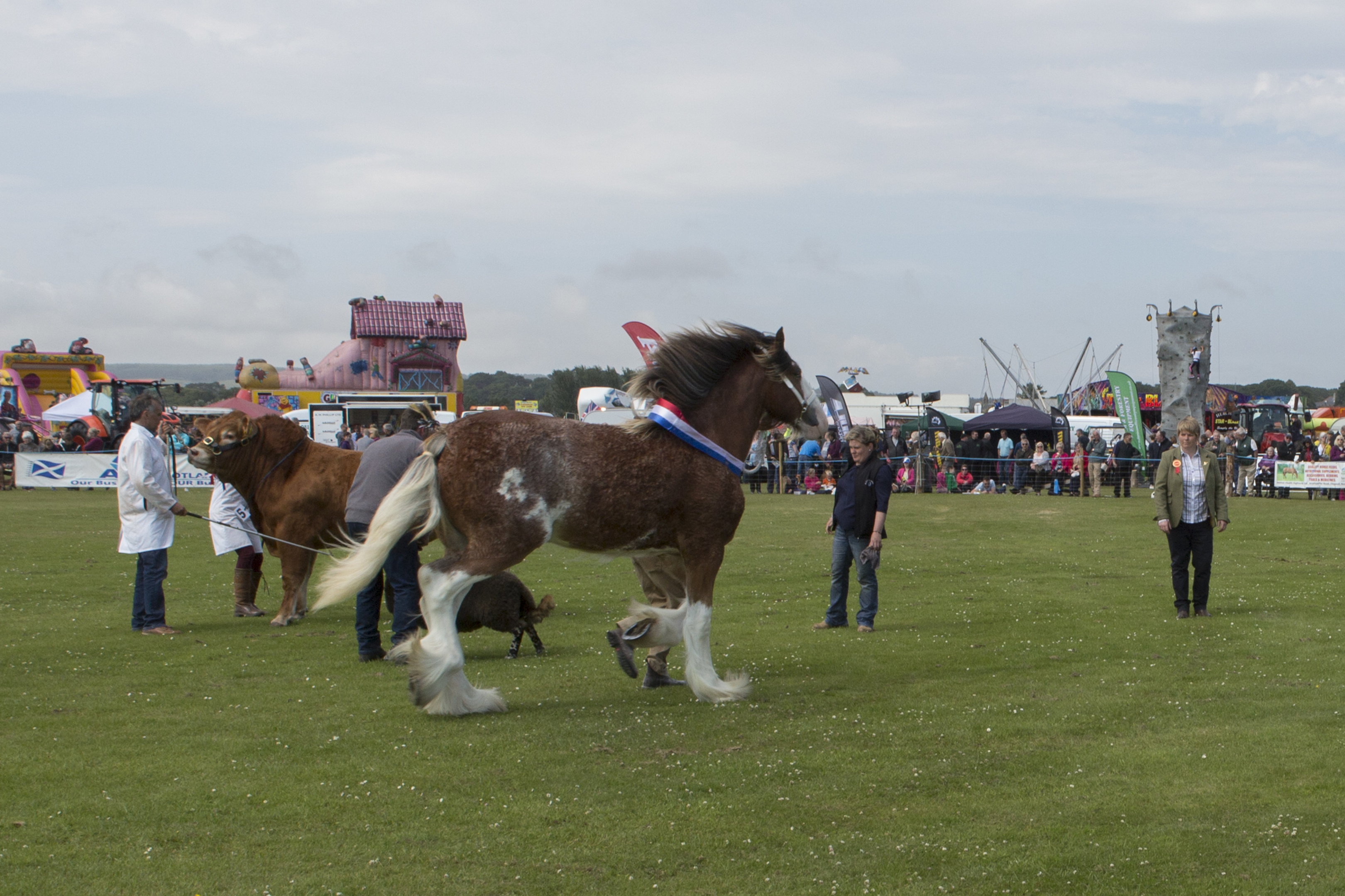 Joyce Campbell, (right), at the Sutherland Show last year