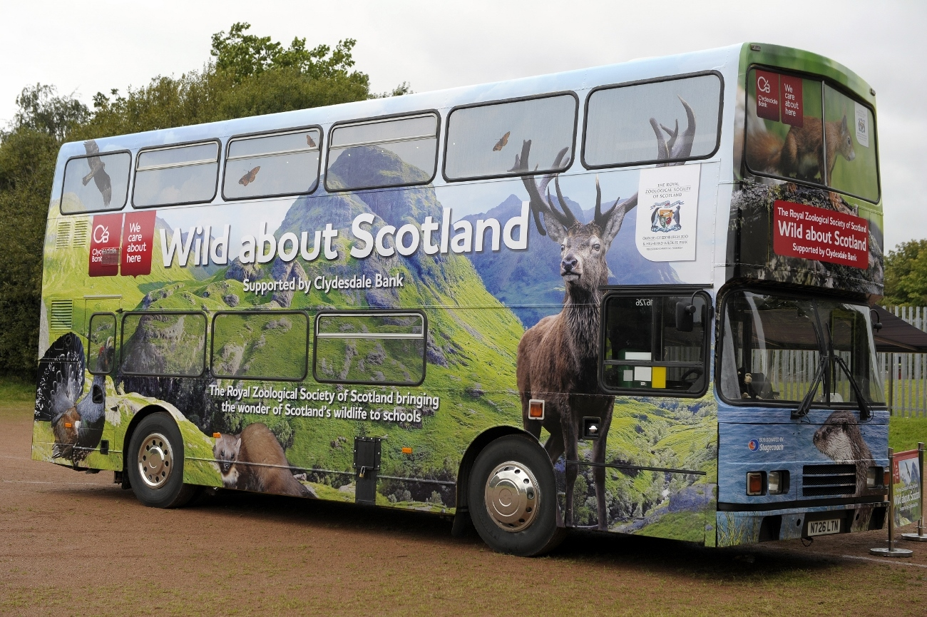 The Wild about Scotland bus in action
