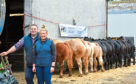 Blair and Rebecca with their team of 10 cattle which are going to the Highland.