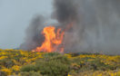 Yesterday's huge gorse fire which took hold near Hopeman is now being treated as wilful fire-raising.