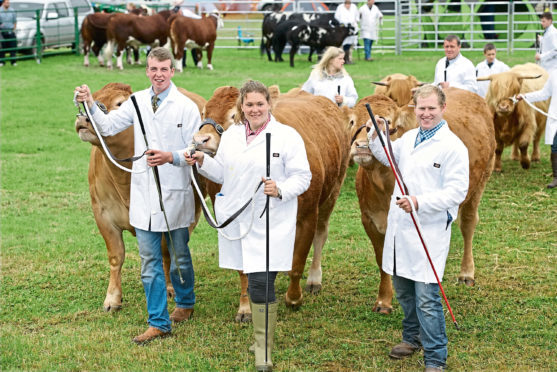 William Moir, Aileen Ritchie and Ross Junor with a team of Limousins at the 2016 show.