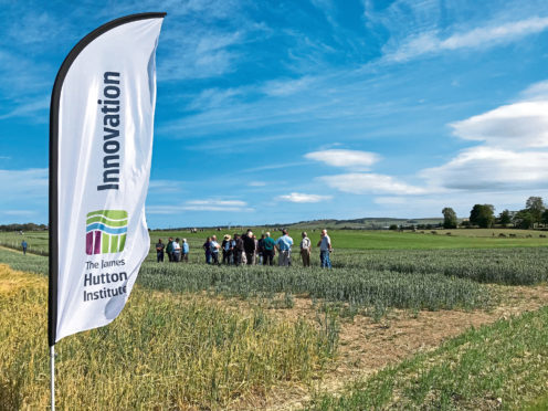 Visitors view exhibition plots at Cereals in Practice 2018.