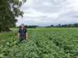 Kerr Howatson in a field of potatoes being irrigated.