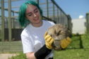 Arbuckle the hedgehog is overweight and lives at New Arc in Ellon