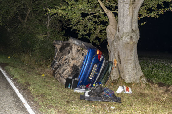 A Blue BMW left the road and collided with a tree.