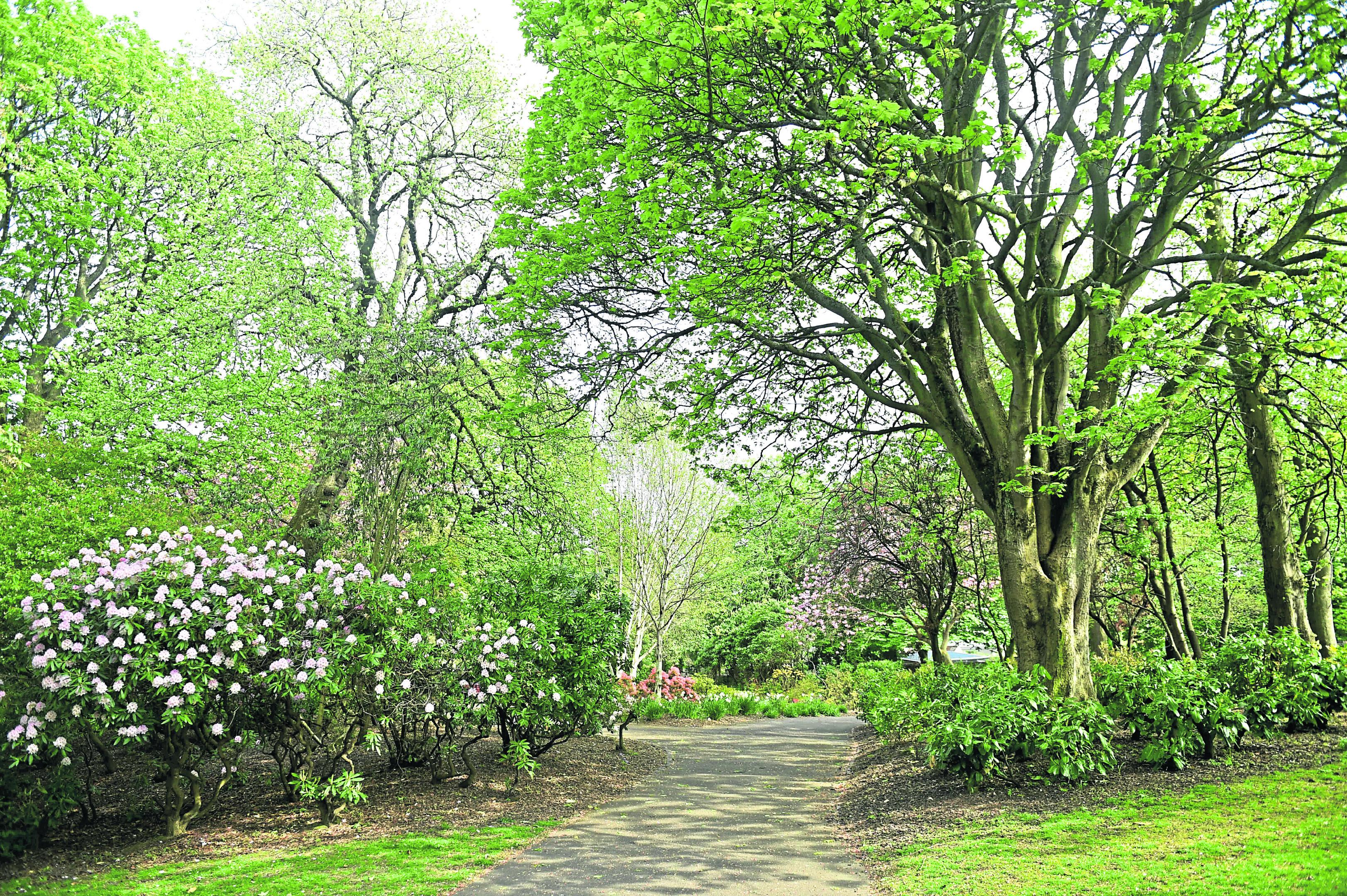 Victoria Park, Aberdeen.