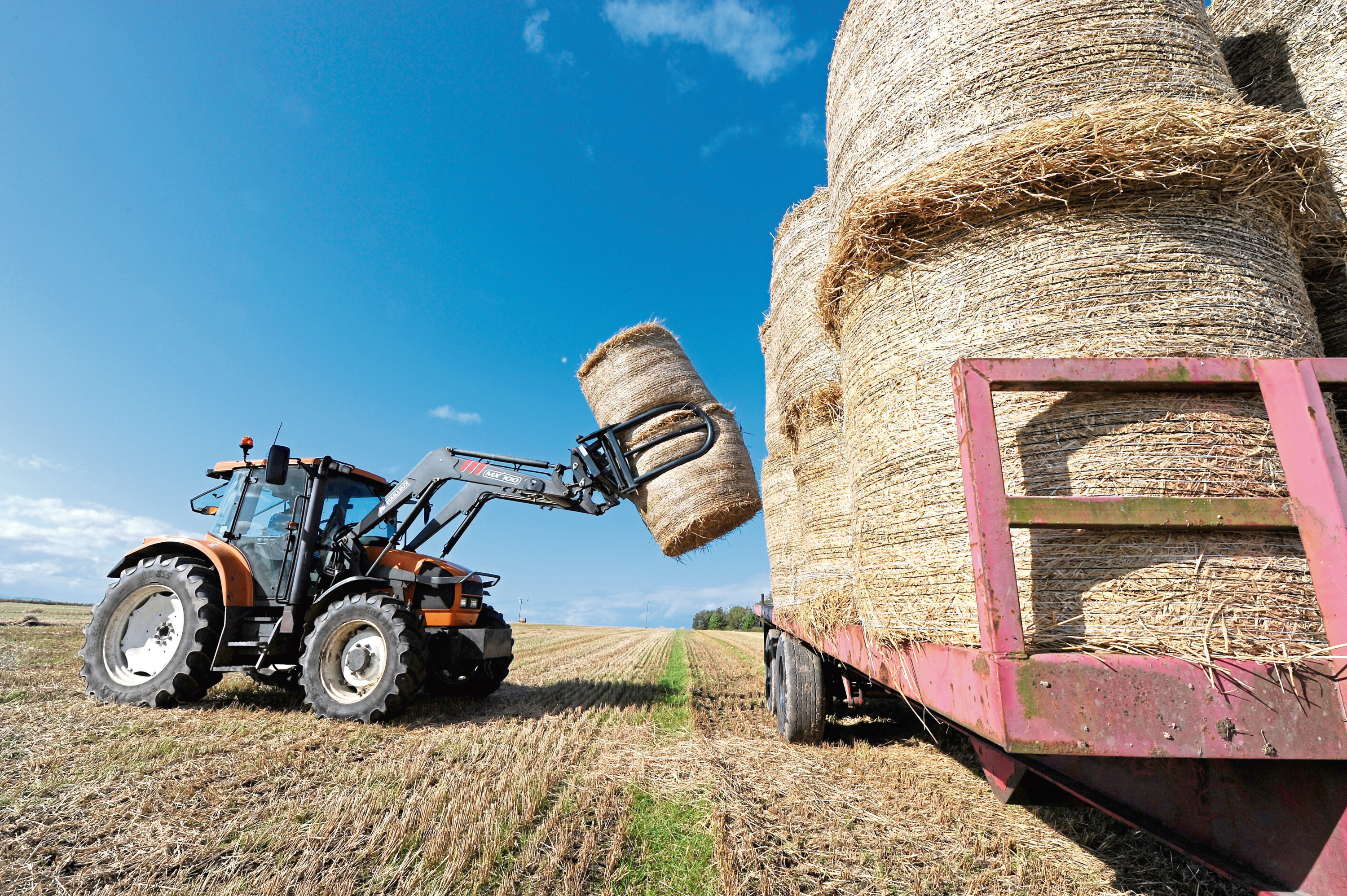 Picture by SANDY McCOOK  29th September '17 Following a very wet harvest, Alan Mathieson of Ardgay collects straw bales from Fearn in Easter Ross.
