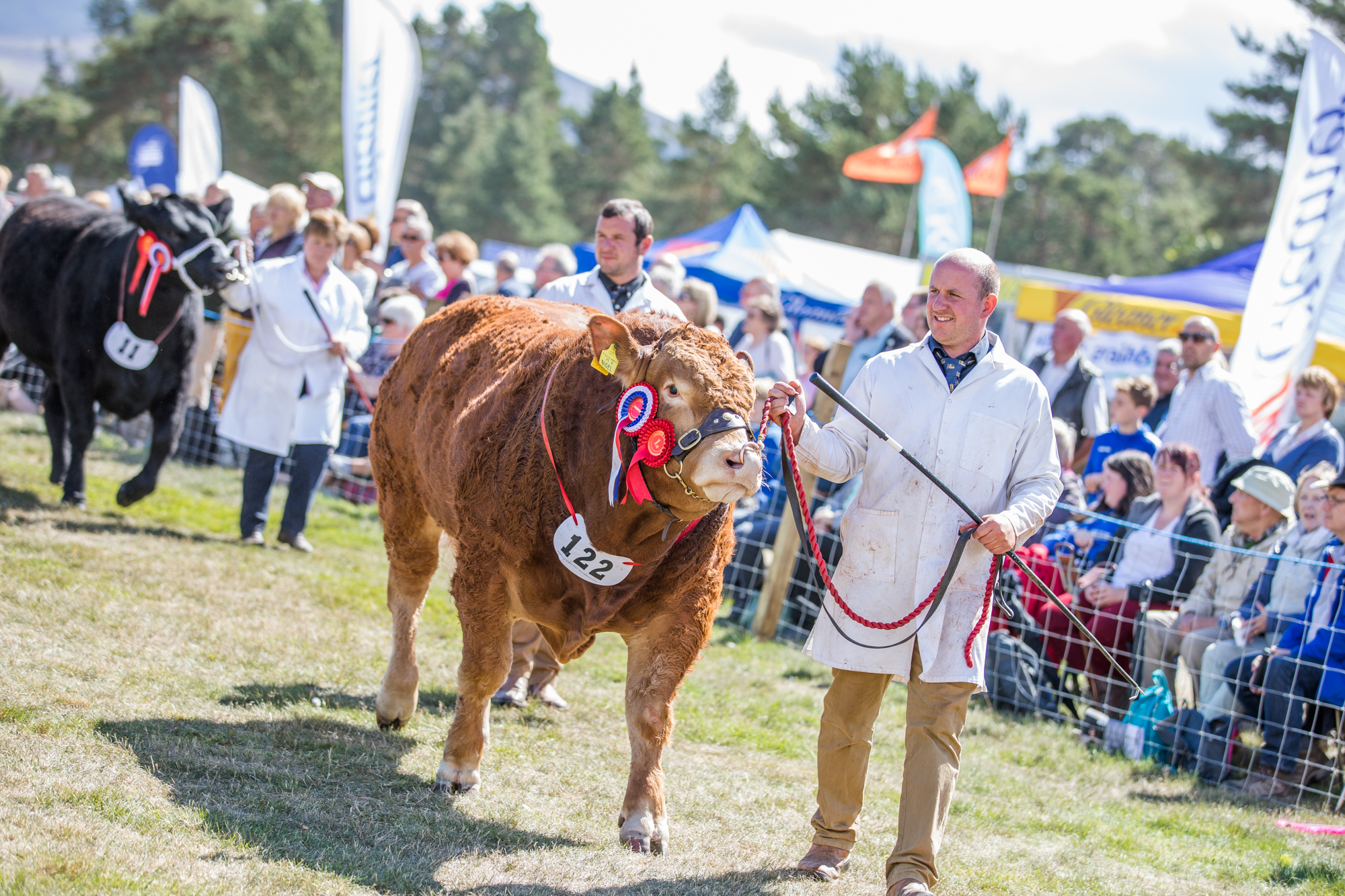 A large crowd came along to see the livestock at the Grantown Show