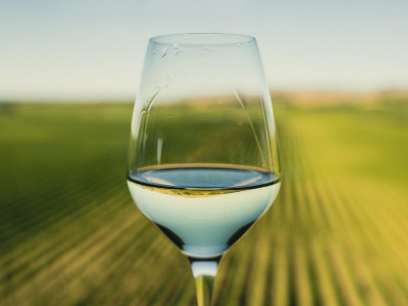 New Zelanad - Wine