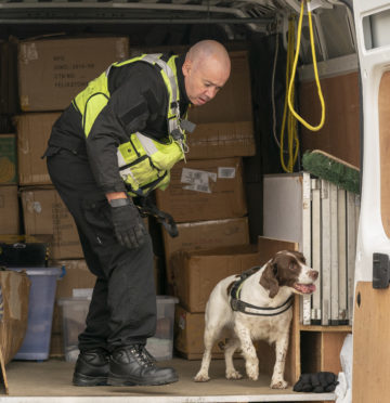 Spaniel Dixie was enlisted to check for illegal tobacco sales at the auction centre in New Elgin.