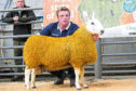 Last year's Border Leicester champion sold for 2,200gn.