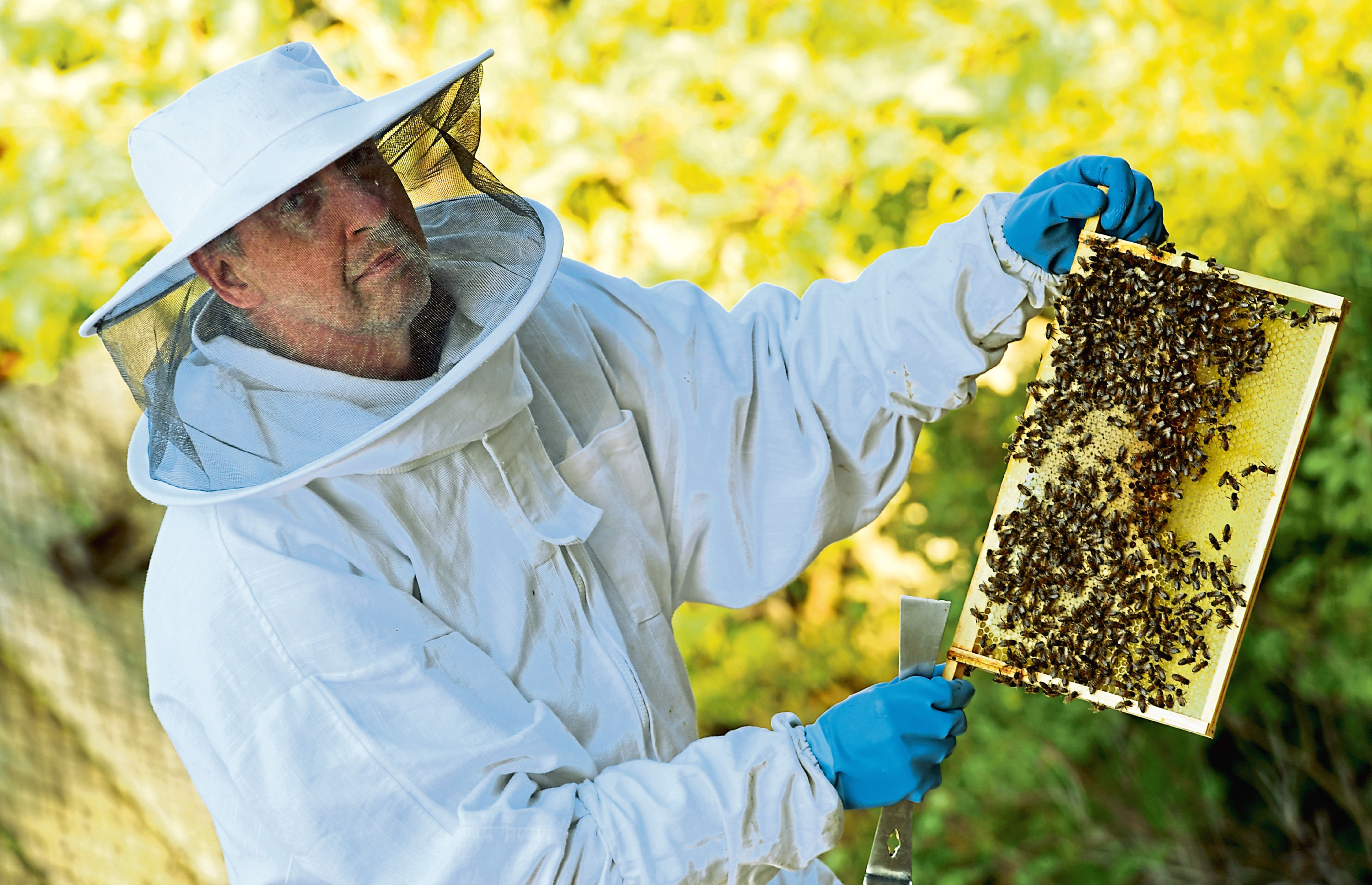North East bee keeper Erling Watt, has had some nucleus bee hives stolen from a farm near Peterhead, containing around 60,000 bees.    Erling is pictured with some other of his hives.     Picture by Kami Thomson    19-09-18