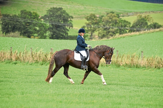Julie Robertson, winner of the Riding Test event. Picture by Stephen Hammond Photograpy.