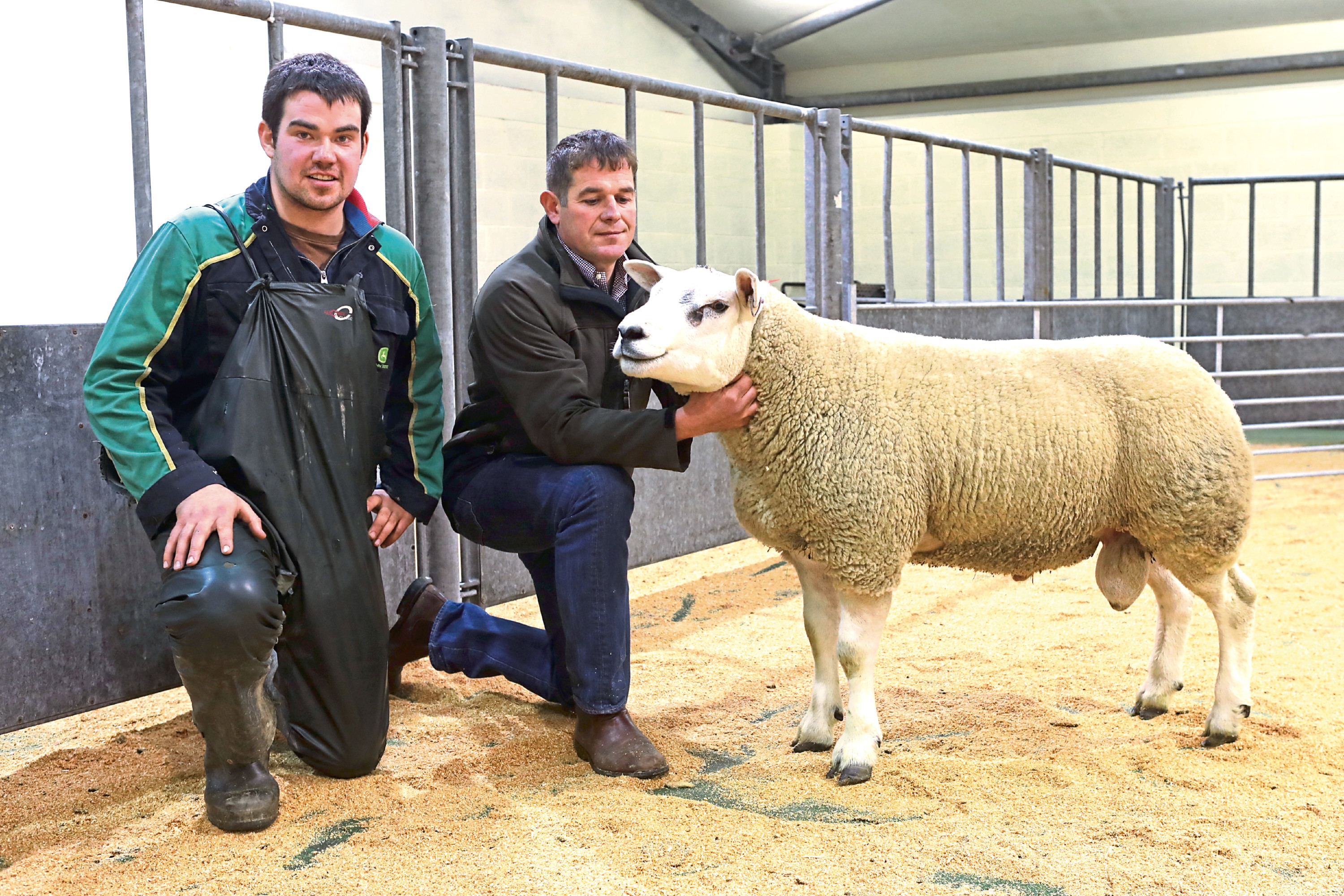 Douglas Paterson (left), Veltigar, Tankerness with buyer Robert McNee, Over Finlarg, Tealing, Dundee who paid the record price of £2,200.