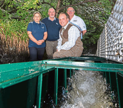 Tamdhu Distillery are teaming up with fisheries experts to reintroduce salmon and trout to the Knockando Burn