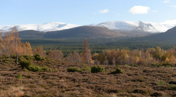Cairngorm Mountain.