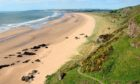 St Cyrus national nature reserve