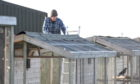 Volunteer Pete Bruce is working to put new roofing on the aviaries