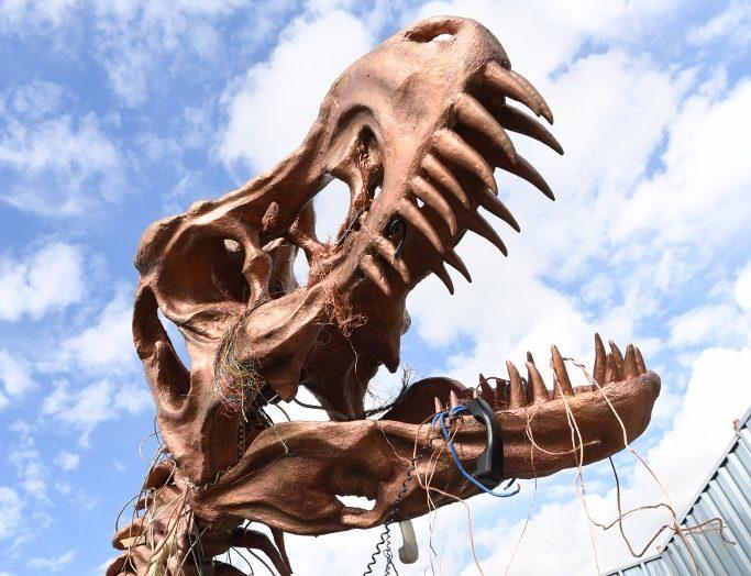 Coppersaurus