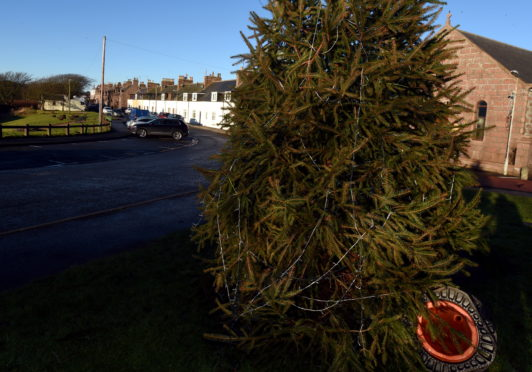 The vandalised christmas tree on Harbour Road, Cruden Bay.  Picture by Jim Irvine  28-12-18