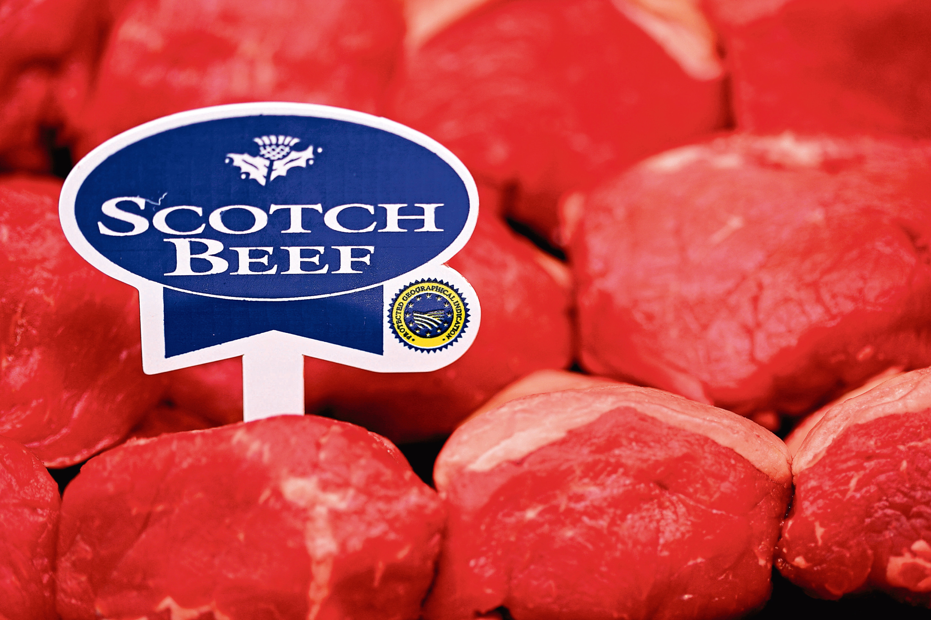 Scotch Beef will be showcased in Canada.
