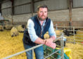 Craig Paterson has won the North East Suffolk Club's annual flock contest.