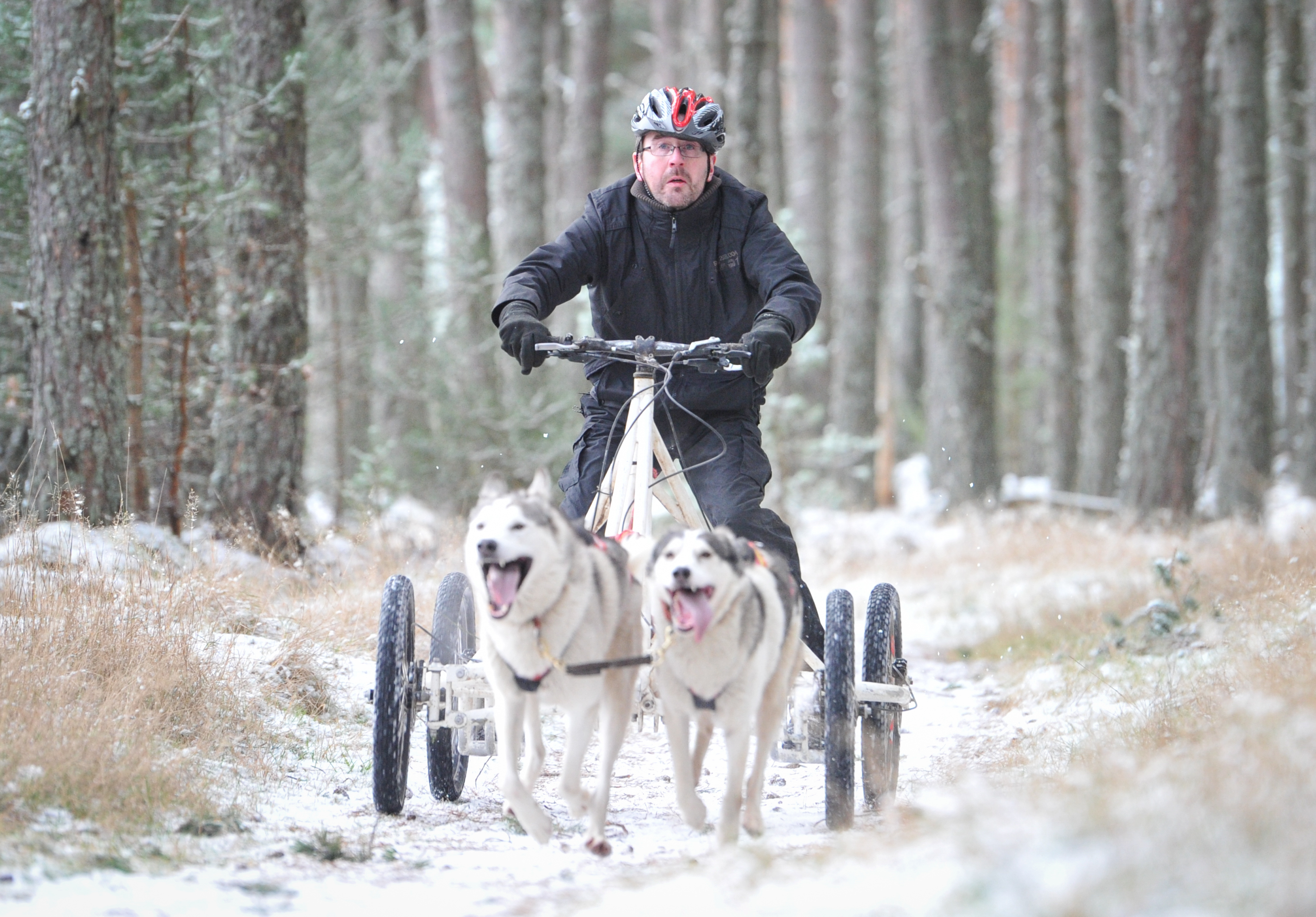 Alistair Munro is pictured on a sled provided by Team Coldfeet.