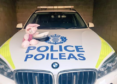 Piglet was found on the Aberdeen bypass.