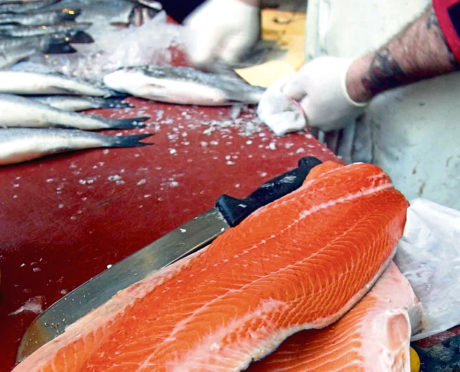 Salmon fillets on sale at a local fish market