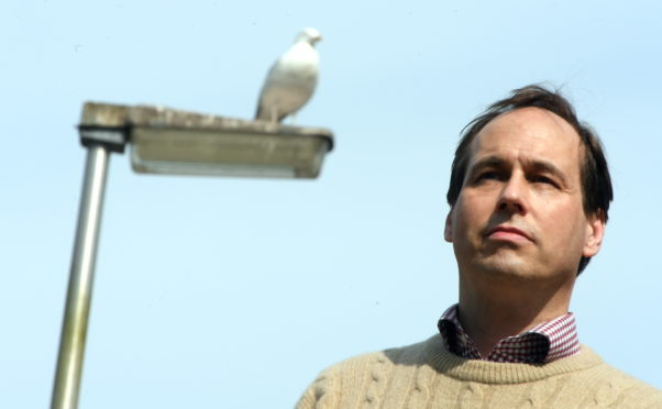 Councillor Martin Greig has appealed to the community around Viewfield not to feed the gulls in the area as they are a problem to the area.