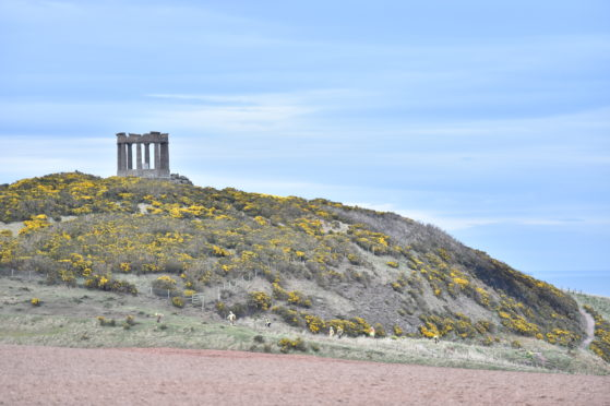 A grass fire at Stonehaven monument.