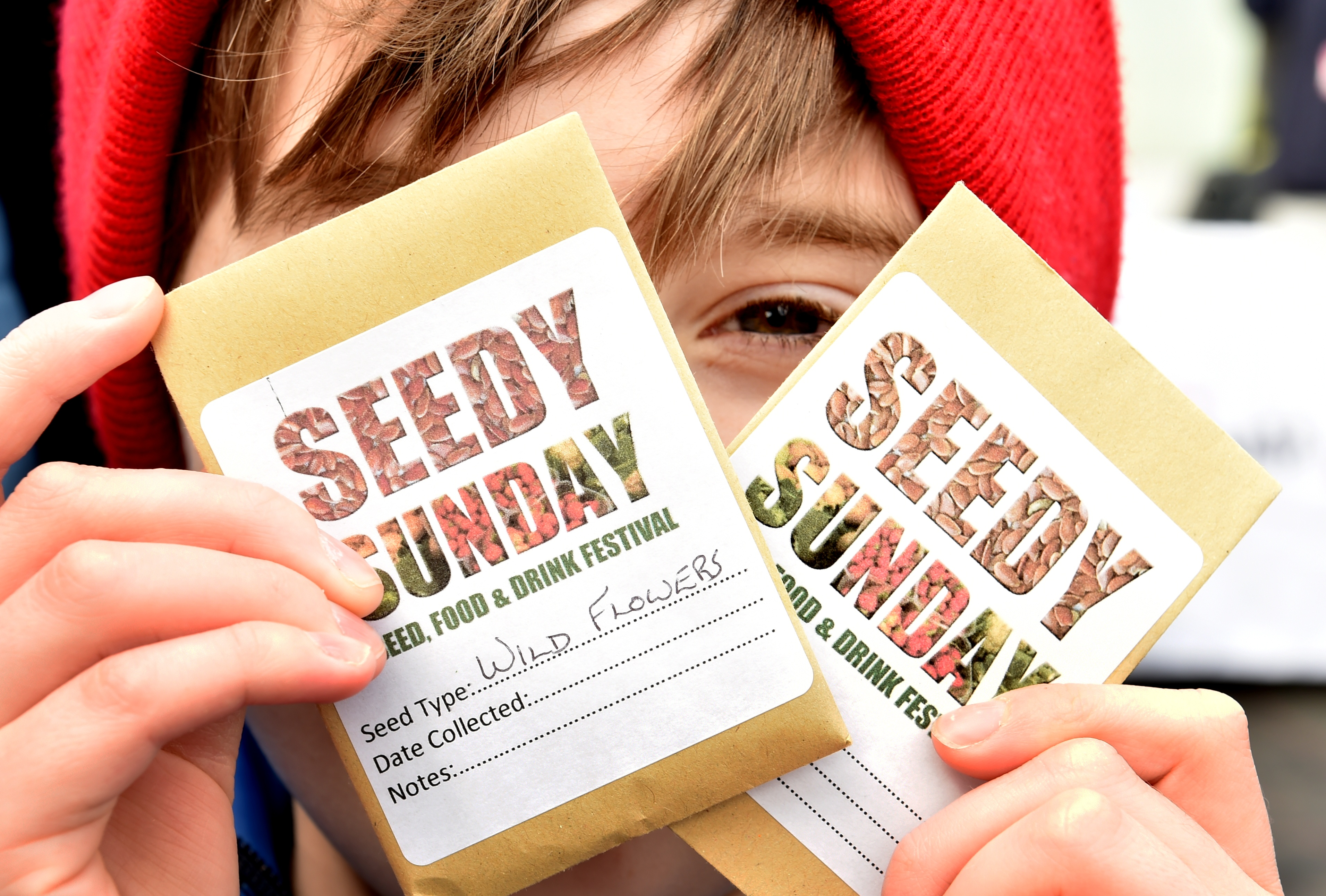 Scott Macpherson, 8 chooses some seeds at the Seedy SUnday festival in Aden Country Park. Picture by COLIN RENNIE   March 17, 2019.