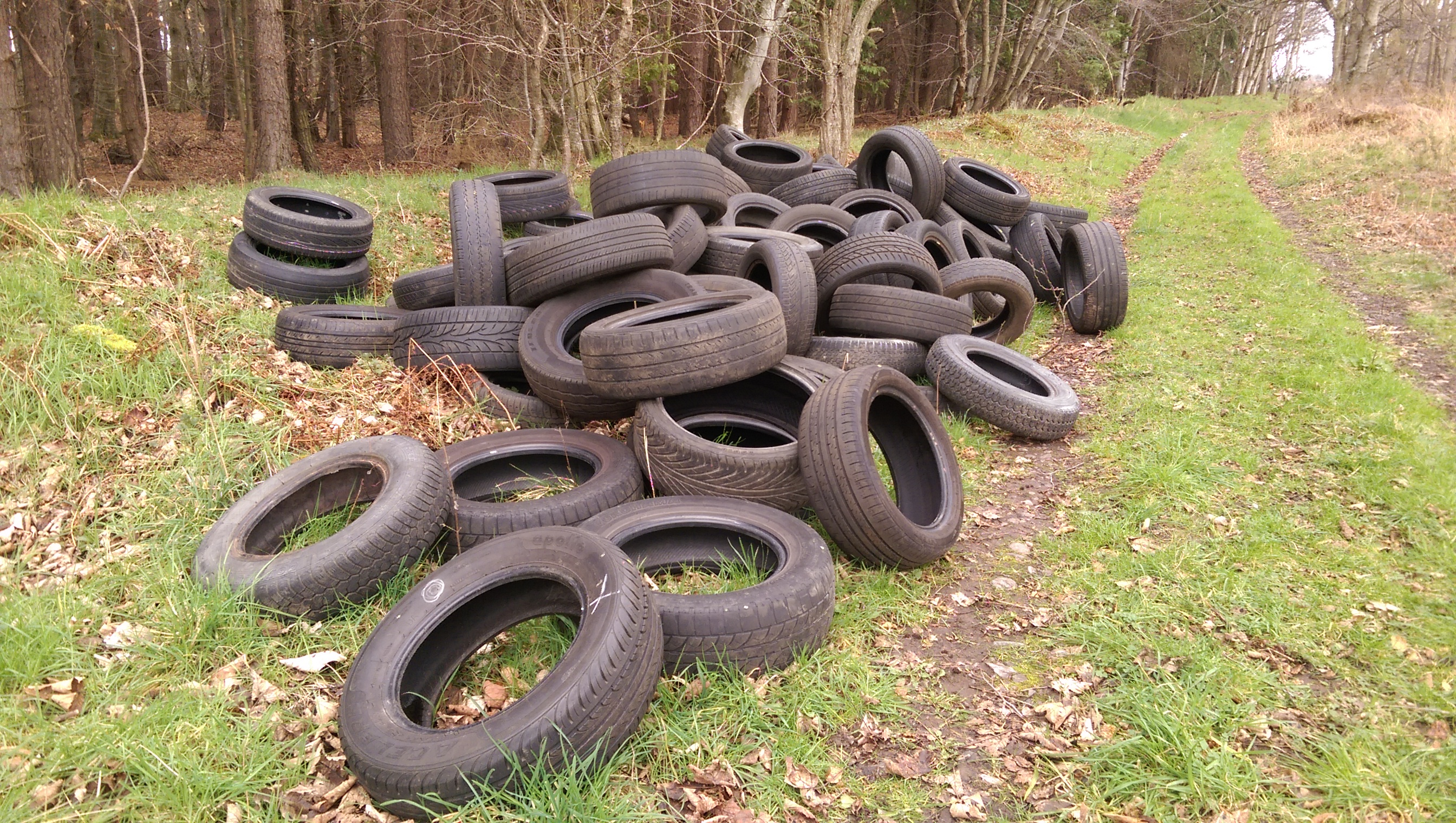Tyres have been dumped next to the River Spey near Fochabers.