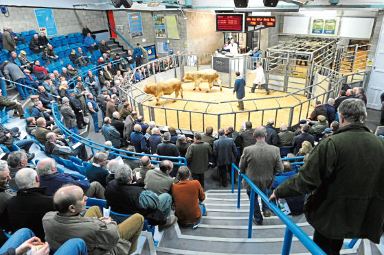 The study is looking for views on livestock auction marts across the UK.