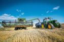 Average wheat yields were up 28% on last year.